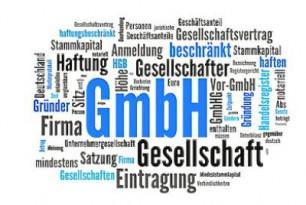 Überblick zur GmbH